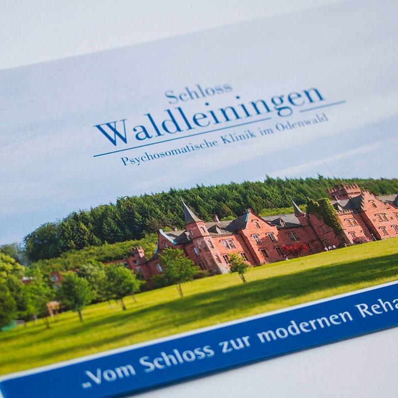 Chronik für das Schloss Waldleiningen