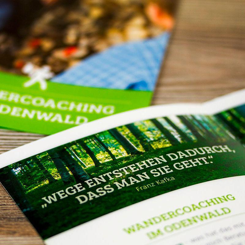 Wandercoaching im Odenwald